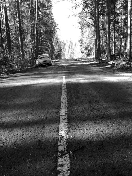Schwarzwald-Caching: Anreise & Roadmovie