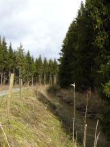 Neckarweg01-14