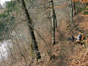 Neckarweg01-19