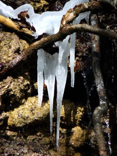 Frühling vs. Winter: Unentschieden