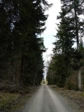Neckarweg04-26
