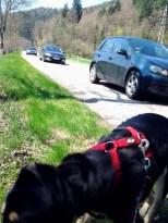 """Verkehrsgünstiger"" Wanderweg"