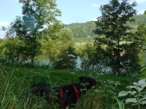 Vesperpause mit Neckarblick