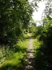 Uferpfad statt Trottoir-Wandern