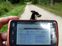 Allzeit bereit: Forest Office mit Hund