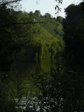 Immer noch idyllischer Neckar