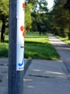 Neckar(rad)weg