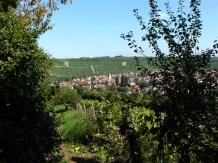 Schattiger Blick auf Mundelsheim