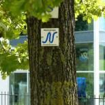 Neckarweg in Neckarsulm