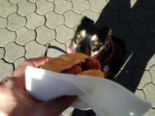 Hungerstiller in Mosbach (für mich)