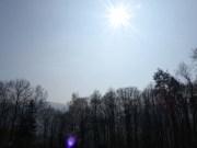 Sonnenwiesensonne