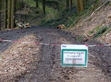 Endstation Forstmatsch