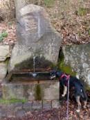 Historischer Durstlöscher