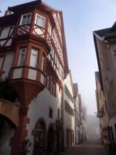 Hirschhorn im Morgennebel