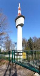 SWR-Paradies Königsstuhl