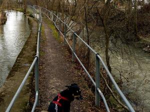 Zum Vergleich: Etappe 1, zwischen Kanal und Neckar