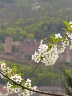 Frühling mit Schlossblick