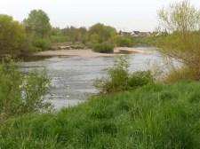 Naturnahe Neckarschleife