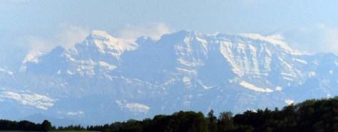 Hegaublick_Alpen