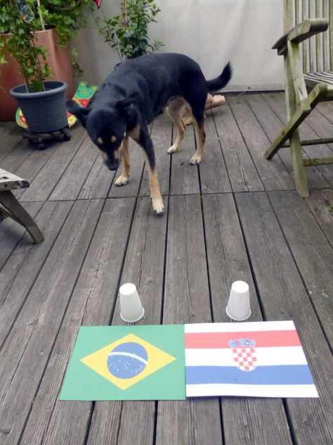 Brasilien oder Kroatien?