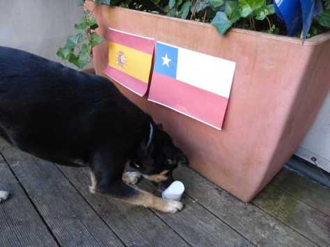 Versuchsaufbau 2: Luis entscheidet sich für Chile