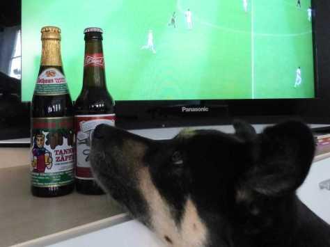 Tannenzäpfle vs. Budweiser