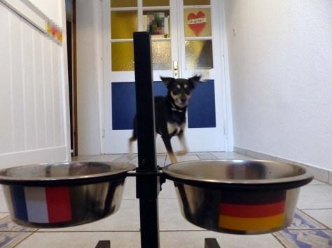 ... sondern Luis beim deutsch-französischen Frühstück