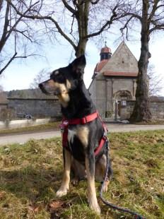 Luis vor der Weilerkirche Owingen