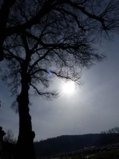 Mittagspausenbaum an der Weilerkirche