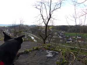 Neckarblick mit Hund (2015)