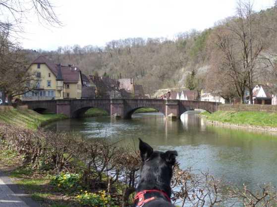 Dass Sulz am Neckar liegt ist kaum zu leugnen