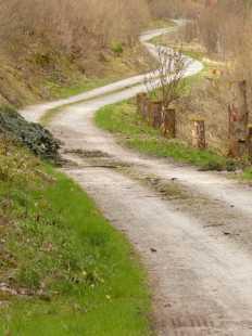 Der Weg windet sich durchs Dobeltal