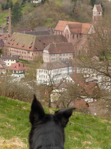Ein schneller Blick aufs Kloster Alpirsbach