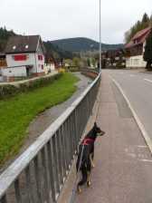 Kinzig im Korsett, Flößerpfad neben Bundesstraße