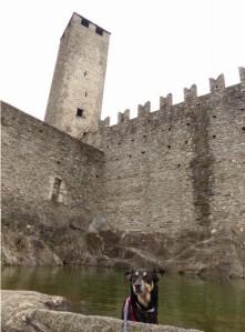 Castelgande Bellinzona: Weltkulturerbe mit Hund
