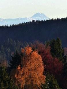 Alpenblick zum 110 km entfernten Säntis