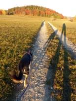 Sowohl Wanderung als auch Schatten wurden immer länger