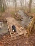 Bridge over plätschernd water
