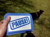 Pause! powered by NL
