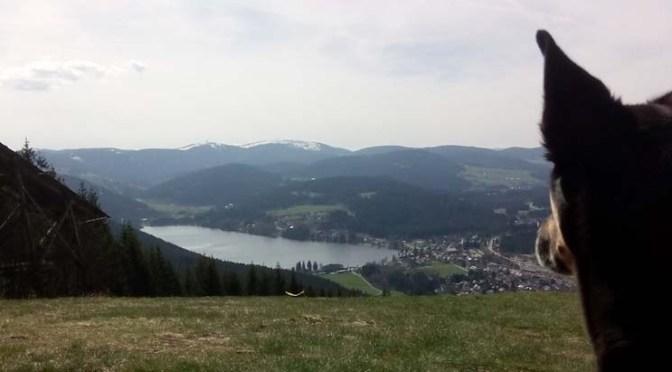 Schwarzwald-Querweg Tag 6: Schattenmühle — Hochfirst — Titisee