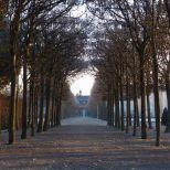 schlosspark-schwetzingen-wintermorgen-004