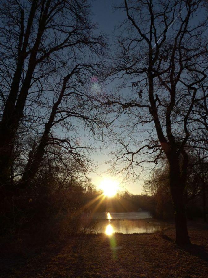 Wintermorgen im Schlosspark  Schwetzingen
