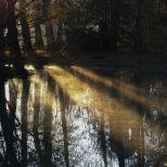 schlosspark-schwetzingen-wintermorgen-008