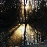 schlosspark-schwetzingen-wintermorgen-009