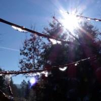 balingen-hangen-fruehling-07
