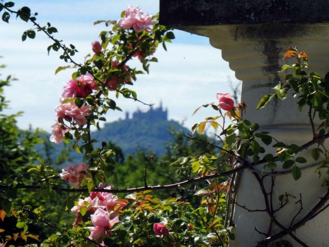 Bali — Pliezi 2: Hechingen-Stein — Wurmlingen