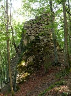 """Ruine Ringelstein des """"Affenschmalz"""""""