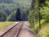 ... aber kein einziger Zug