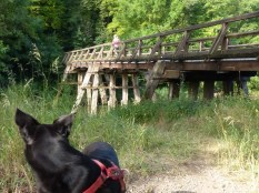 Erinnert an Cher: Pfahlhochbrücke, manche Teile 750 Jahre alt