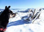 Alpenuberquerung-Fügen-Hohenfügen-14